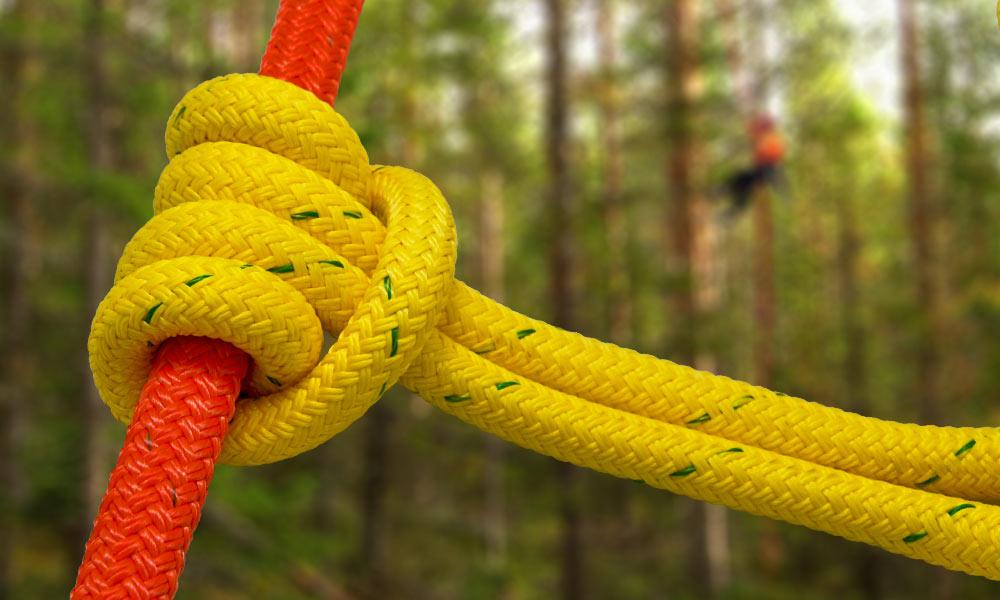 Clg bull ropes.